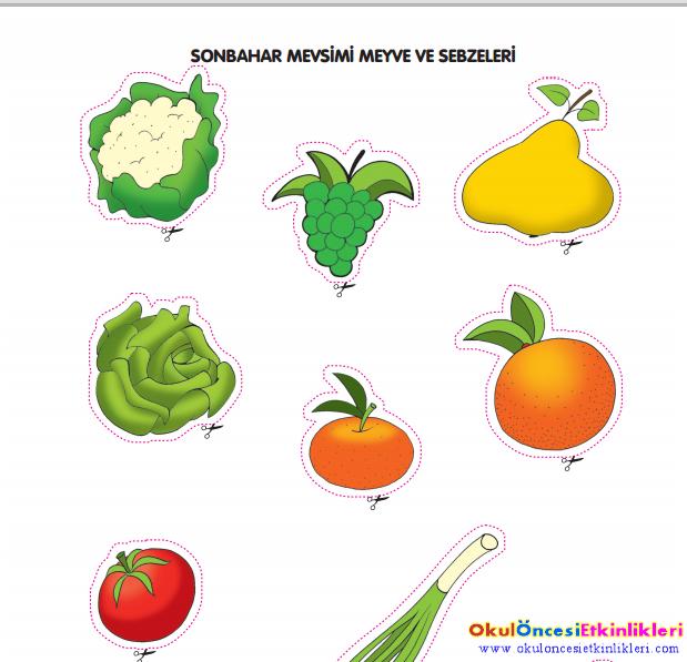 Sonbahar Mevsimi Meyve Ve Sabzeler Okul Oncesi Etkinlikleri